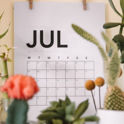 Monthly Bookish Wrap up: July 2020