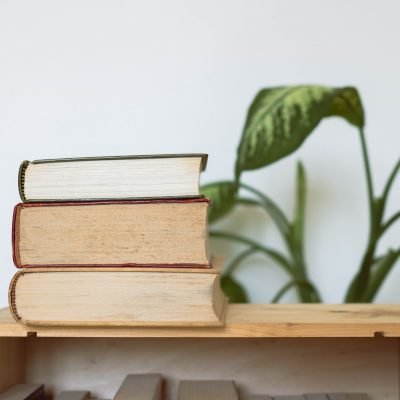 Our Most Anticipated Reads of 2021: January-July Releases